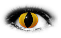 ADRIA Crazy Color Yellow Cat Eyes Contact Lenses