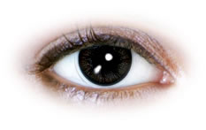 Neo Cosmo - Fluffy Black Contact Lenses (N079)