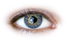 Neo Cosmo - 3 Tone Blue Contact Lenses (N321)