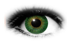 ADRIA 38 Color Green Contact Lenses