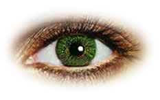 Freshlook Colors Green Contact lenses