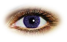 Freshlook Colors Violet Contact lenses