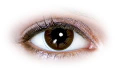 Neo Cosmo - Fluffy Brown Contact Lenses (N074)