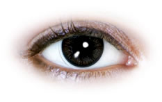 Neo Cosmo - Fluffy Grey Contact Lenses (N075)