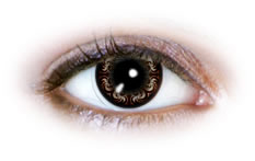 Neo Cosmo - Swirly Brown Contact Lenses (N504)