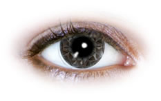 Neo Cosmo - Silver Diamond Contact Lenses (N515)