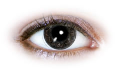 Neo Cosmo - Black Diamond Contact Lenses (N519)