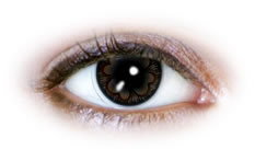 Neo Cosmo - Brown Clover Contact Lenses (N534)