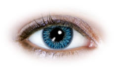 Neo Cosmo - 2 Tone Blue Contact Lenses (N221)