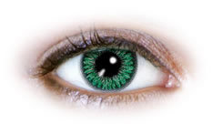 Neo Cosmo - 2 Tone Green Contact Lenses (N222)