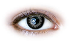 Neo Cosmo - Grey Color Ring Contact Lenses (N025)