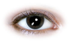Neo Cosmo - Smoky Black Contact Lenses (N015)