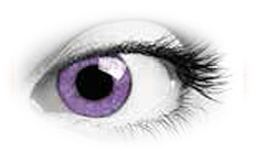 Soleko Queens Oros Mystery Violet Contact Lenses