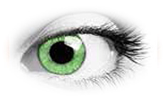 Soleko Queens Oros Warm Green Contact Lenses